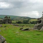 Dartmoore park landscape