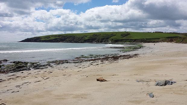 Devonshire beaches